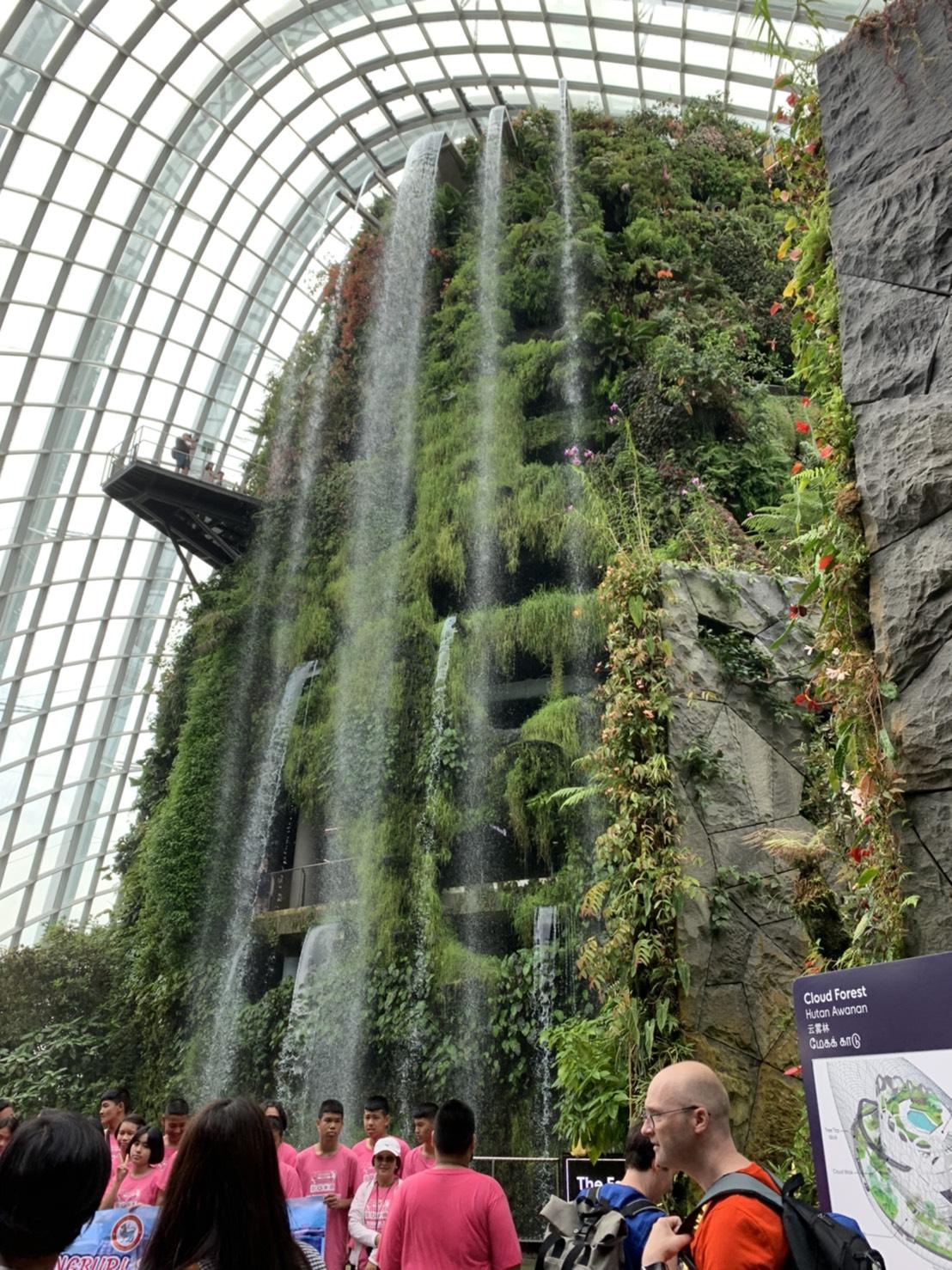 シンガポールに巨大壁面緑化!