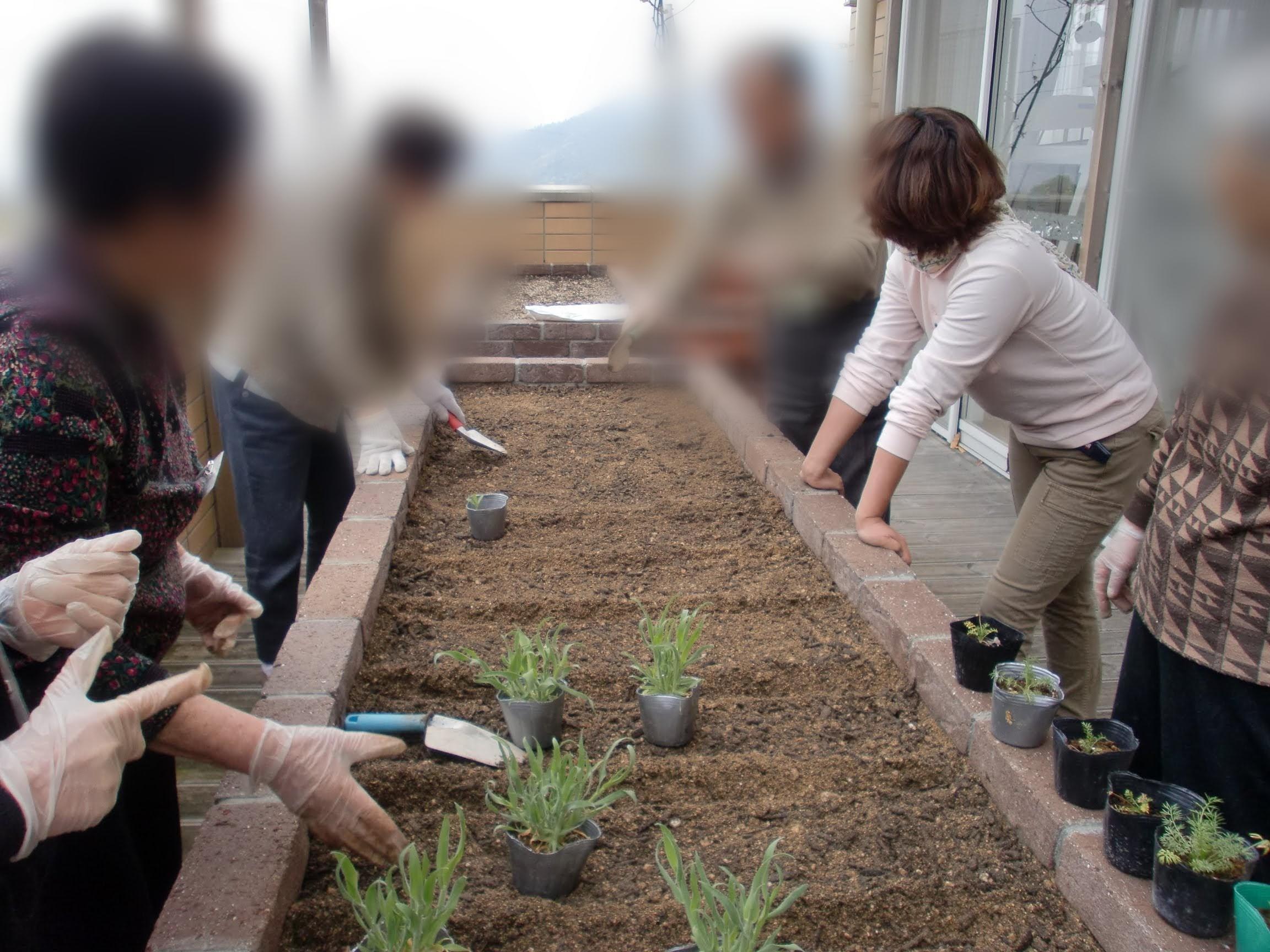 園芸療法とガーデンセラピーの違いは?結局は・・・