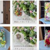 Instagramにショッピング機能追加。インスタからHanatrip造花商品の購入アクセスがより早くなりました!